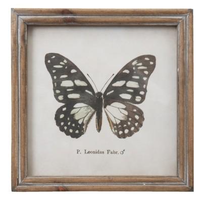 Grafika z czarnym motylem