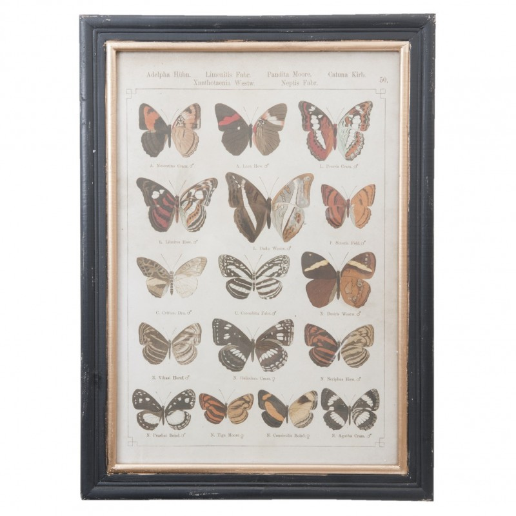 Grafika w czarno- złotej ramie z 16 motylami Clayre & Eef 50238
