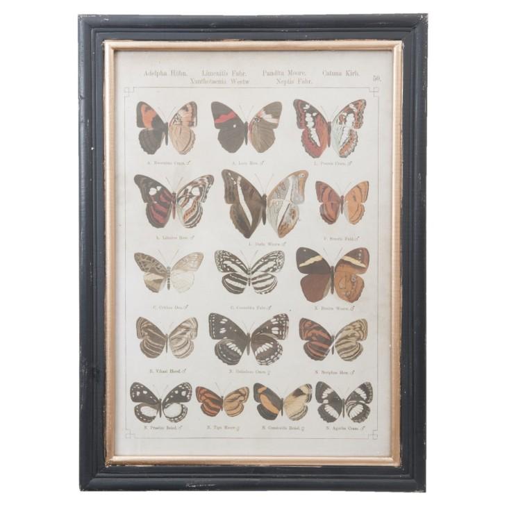 Grafika z 16 motylami Clayre & Eef 50238