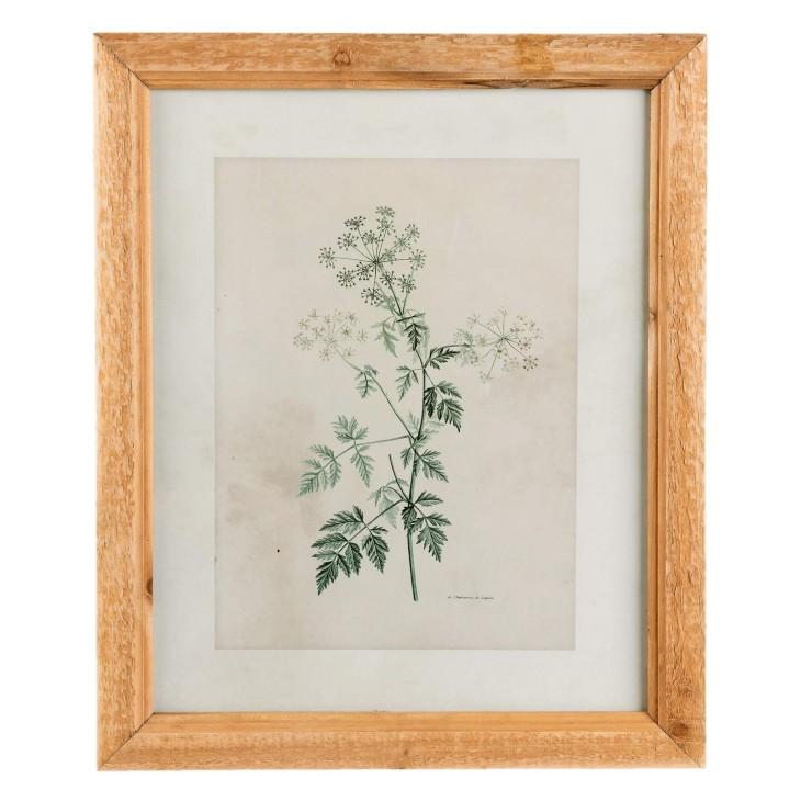 Grafika obraz na ścianę kwiaty w drewnianej ramie I, dekoracja Clayre & Eef 63866