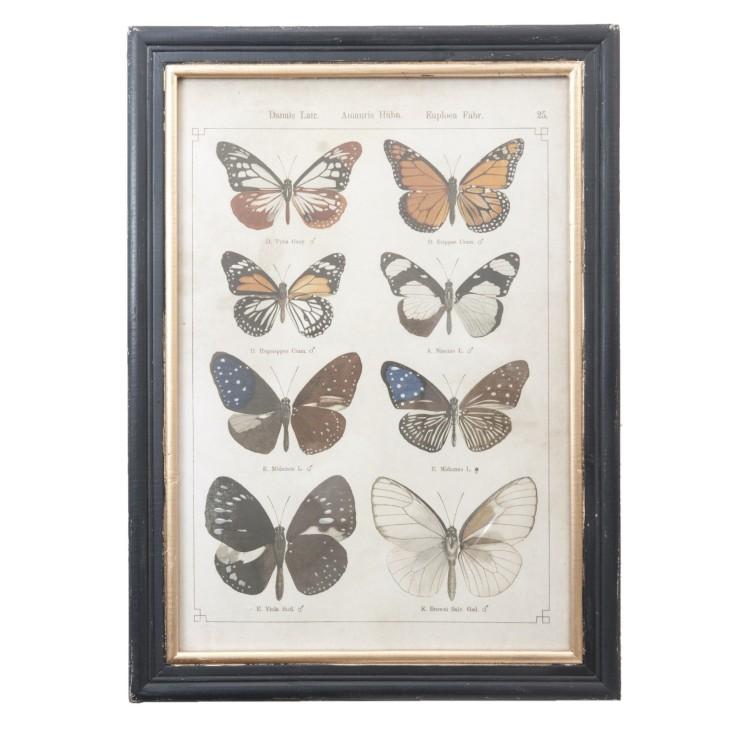 Grafika w drewnianej ramie z 8 motylami Clayre & Eef 50239