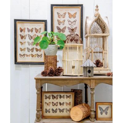 Grafika w drewnianej ramie z 8 motylami