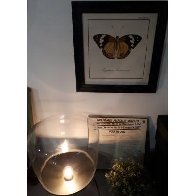 Grafika w drewnianej ramie z miodowym motylem