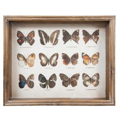 Grafika z 12 motylami