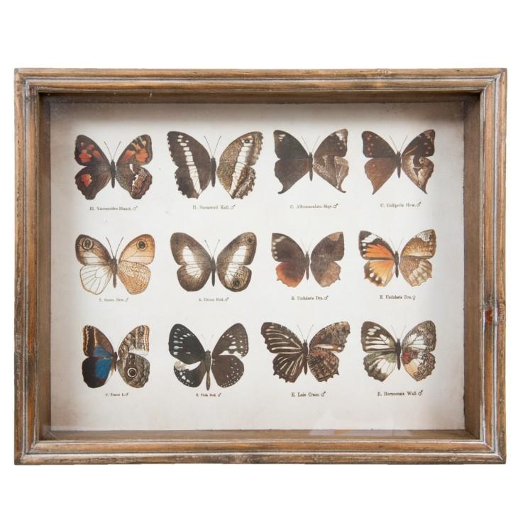 Grafika w drewnianej ramie z 12 motylami Clayre & Eef 50235