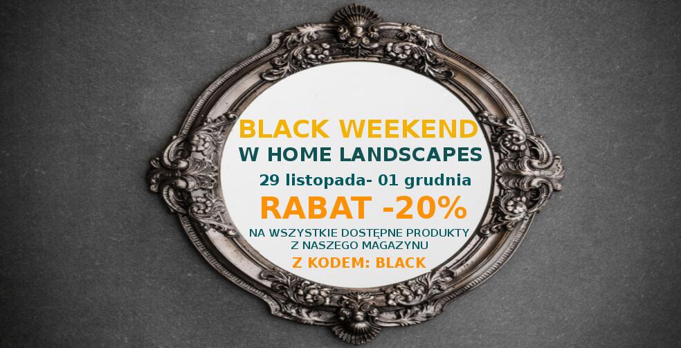 Black Friday w sklepie Home Landscapes